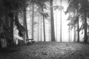 rp_Palahniuk-y-los-fantasmas.jpg